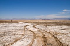Mojave desert. Royalty Free Stock Photography