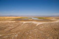 Mojave desert. Royalty Free Stock Photos