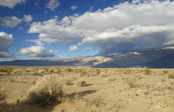 Mojave Desert in American Southwest Royalty Free Stock Photography