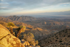 Mojave desert from Inspiration point Royalty Free Stock Image