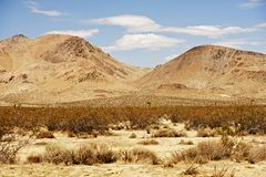 Mojave Desert Landscape Royalty Free Stock Image