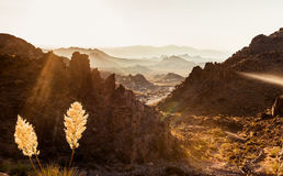 Mojave Desert Landscape Royalty Free Stock Photos