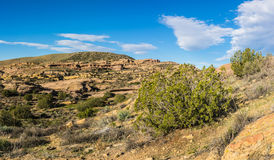 Mojave Desert Nature Wilderness Stock Photography