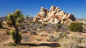 Mojave Desert Panorama stock images
