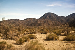 Mojave Desert Scene. This is a scene from the Mojave Desert stock photos