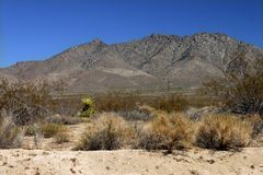 Mojave Desert - southern California Royalty Free Stock Photos
