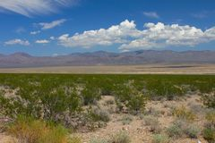Mojave Desert - southern California. The dry landscape of the Mojave National Preserve in California Stock Photos
