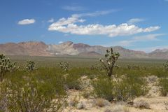 Mojave Desert - southern California Stock Photos