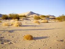 Mojave desert vista Stock Photo