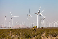 Mojave Desert. Windmill farm in Mojave desert, California Royalty Free Stock Images