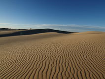 Mojave Dune Royalty Free Stock Images