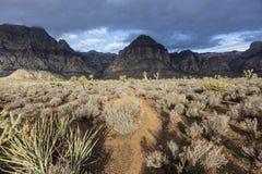 Mojave Morning Storm. Morning storm in southern Nevada's Mojave desert Stock Photo