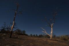 Mojave night sky landscape Stock Photos