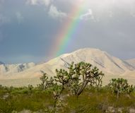 Mojave Sunshine Rainbow royalty free stock images