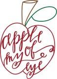 moje oko jabłkowego Zdjęcia Royalty Free