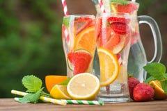 Mojito鸡尾酒和成份、柠檬、草莓和桔子 库存照片