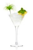 Mojito鸡尾酒用在马蒂尼鸡尾酒玻璃的伏特加酒 库存照片