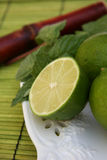 mojito συστατικών Στοκ φωτογραφία με δικαίωμα ελεύθερης χρήσης