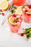 Mojito или лимонад поленики Стоковые Фото