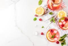 Mojito или лимонад поленики Стоковое Изображение