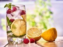 Mojito поленики с стеклом льда лимона кубов напольно Стоковое Изображение RF