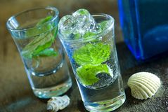 Mojito. Fresh mojitos, focus on the front glass Stock Images