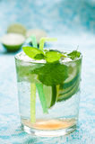Mojito Royalty Free Stock Photo