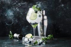 Mojito alcoólico do mirtilo do cocktail do verão com rum, hortelã, cal fotos de stock royalty free