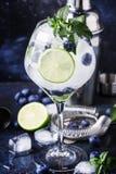 Mojito alcoólico do mirtilo do cocktail do verão com rum, hortelã, cal imagens de stock