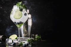 Mojito alcoólico do mirtilo do cocktail do verão com rum, hortelã verde, imagem de stock