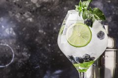 Mojito alcoólico do mirtilo do cocktail do verão com rum, hortelã verde, fotos de stock royalty free