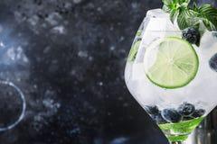 Mojito alcoolique de myrtille de cocktail d'été avec le rhum, menthe, chaux photos libres de droits