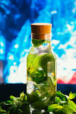 Mojito bottle with lime and mint ice cube close-up on blue background Royalty Free Stock Photos