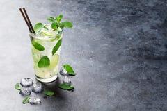 Mojito cocktail photographie stock