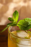 Mojito Cocktail lizenzfreie stockfotografie