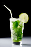 Mojito cocktail Royalty Free Stock Photography