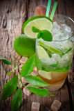 Mojito cocktail Royalty Free Stock Photos