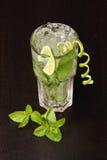 Mojito Cocktail stockfotos