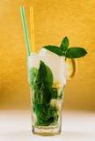 Mojito cocktail Imagen de archivo