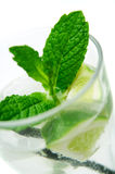 Mojito Cocktail. A glass of mojito cocktail (focus on the mint leaf royalty free stock photos