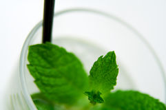 Mojito Cocktail. A glass of mojito cocktail (focus on the central leaf royalty free stock photo