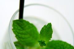 Mojito Cocktail Royalty Free Stock Photo