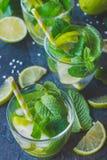 Mojito cocktail Immagini Stock
