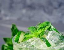 Mojito cocktail Fotografía de archivo libre de regalías