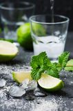 Mojito cocktail in a bur on a rustic table Royalty Free Stock Images