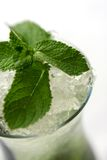 Mojito cocktail Close-up Royalty Free Stock Image