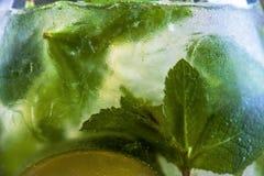 Mojito Cocktail Royalty Free Stock Image