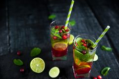 Mojito cocktail with cranberry, lime and mint. In highball glass on a grey stone background. Summer alcoholic cocktail Stock Photos