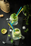 Mojito cocktail of fresh lime and mint with ice Royalty Free Stock Photos