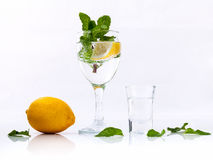 Mojito cocktail with fresh mint leaves isolate  on white backgro Royalty Free Stock Photo